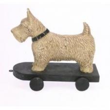 Hund auf Rollbrett