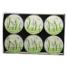 6er Teelichterpack Schneeglöckchen altweiß